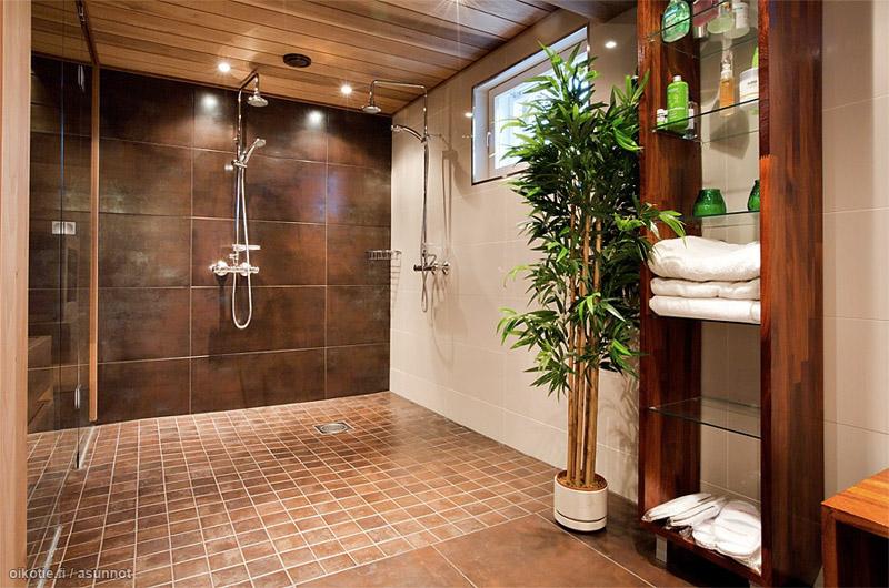 omakotitalo-hirsitalo-ruskeakylpyhuone