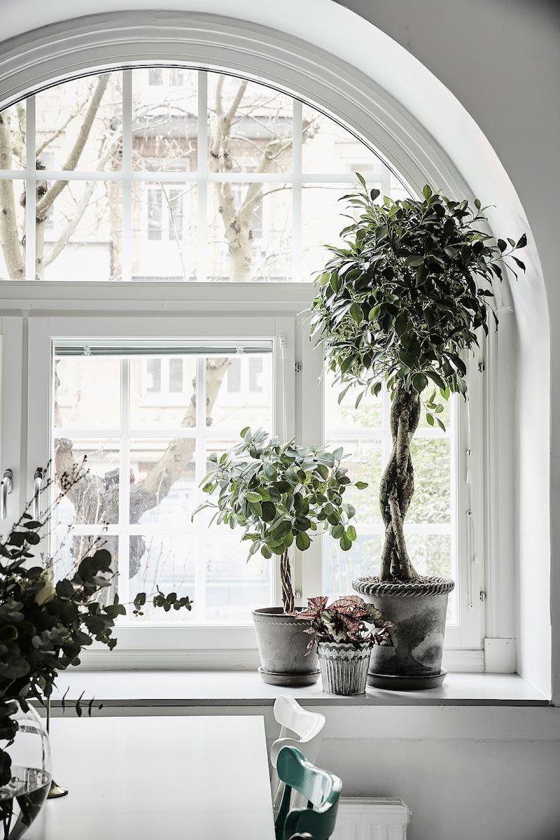ikkunalauta-monipuolinen-sisustus