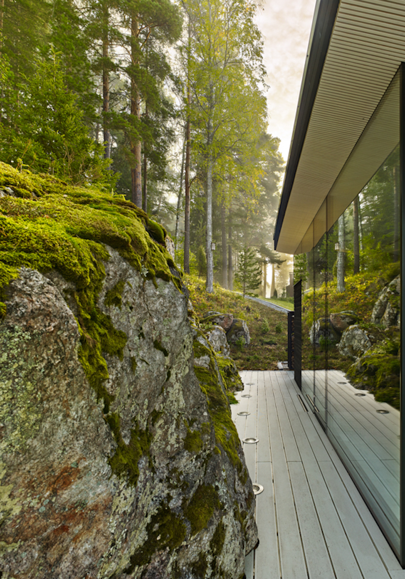 sauna-kotiranta-luonto